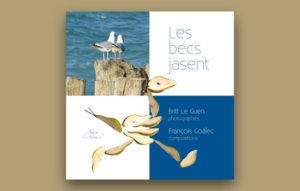 Les Becs Jasent, le livre - projets
